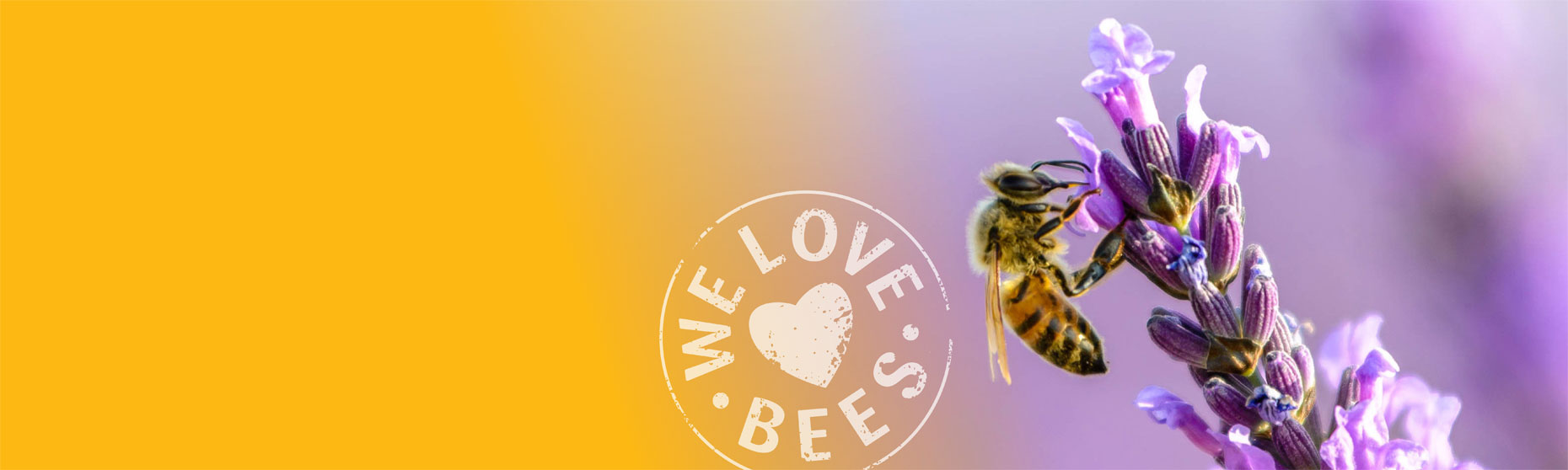 Amazing facts about Bees and Honey