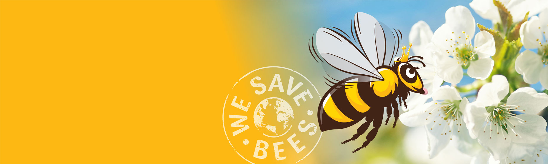 We specialise in the live removal of honey bees