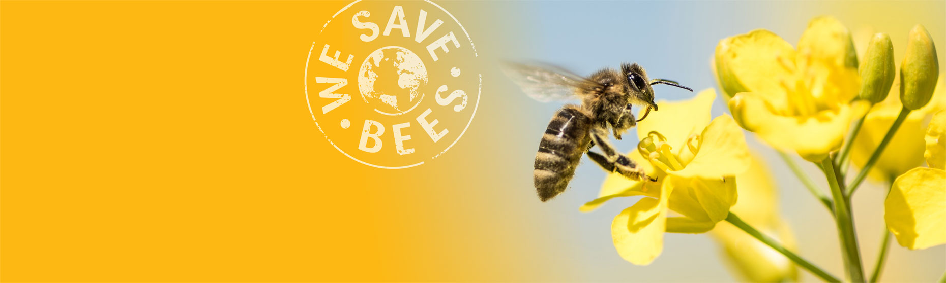 Facts that threaten UK honey bees