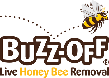 Buzz Off Live Honey Bee Removal